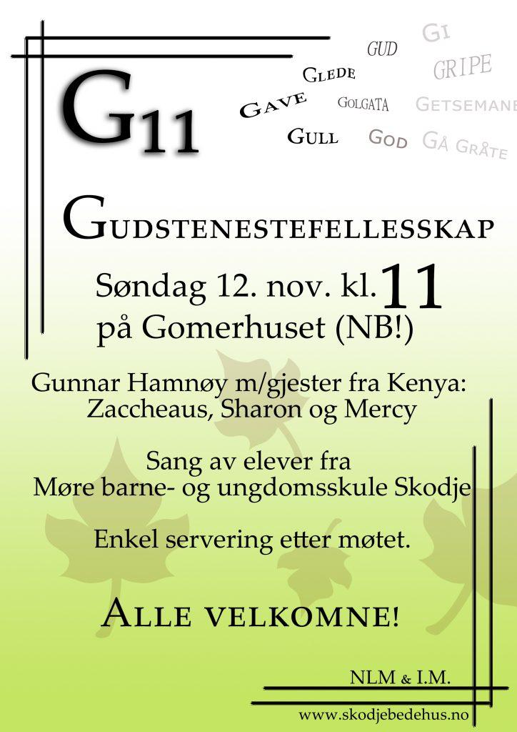 G11 Gomer 12.11.2017